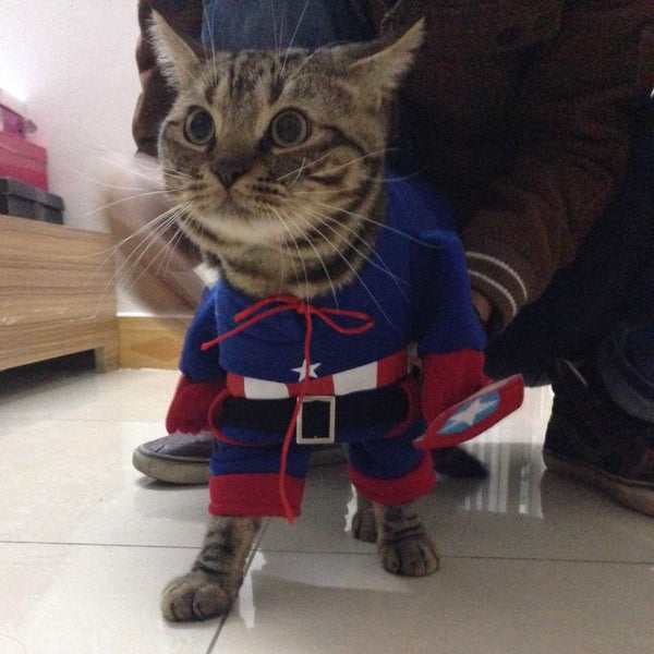 Captain Meowmerica Cat Costume - Two Stupid Cats