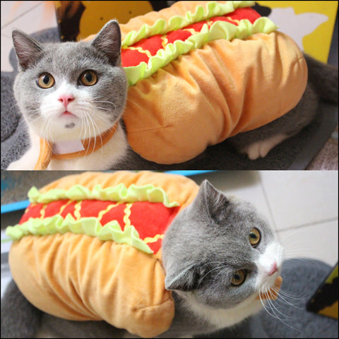 I Can Has Hot Dog Cat Costume - Two Stupid Cats