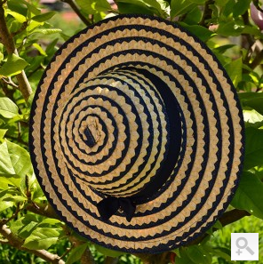Large Striped Sunhat