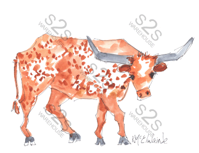 Art  by KM - Longhorn 2 White - Sublimation Print