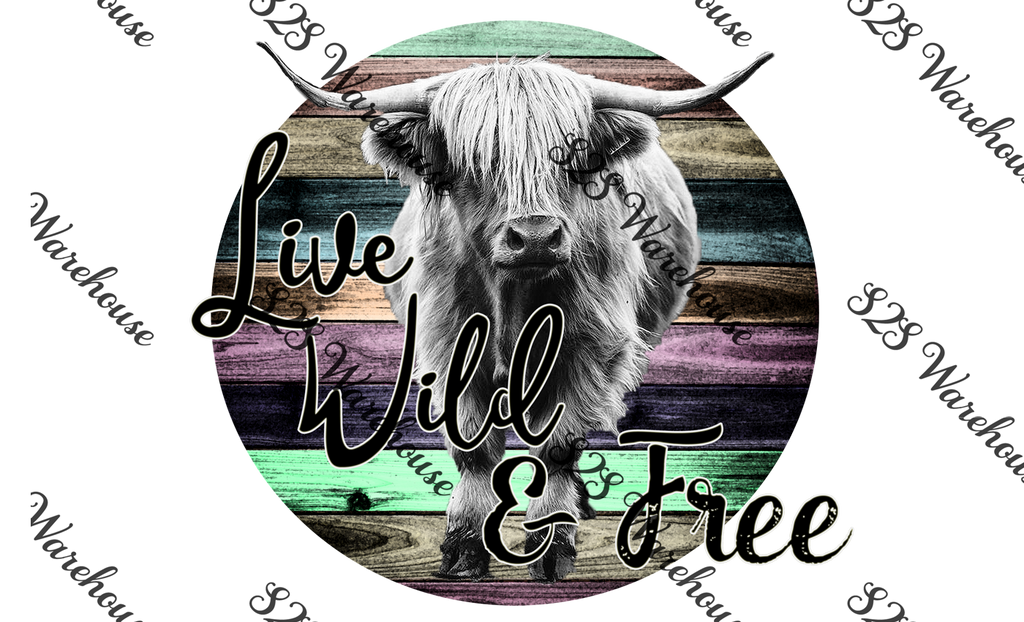 Live Wild And Free Highland Bull