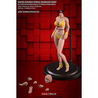 (PO) PHMB2019-T03A - 1/12th Scale Super Flexible Seamless Female Body (Pale/ Medium Breast Size) (2)