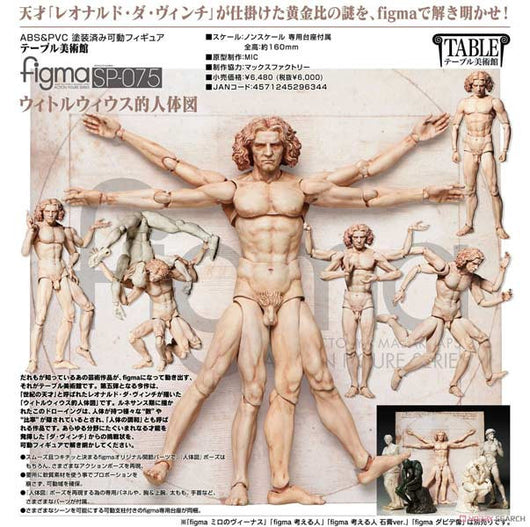 figma SP-075 The Table Museum - Vitruvian Man