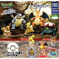 Pokemon Sun & Moon Kanto Ippai Collection