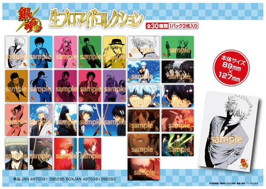 (PO) Gintama Bromide Collection (6)