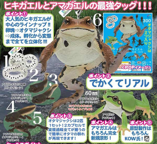 Nature Techni Colour MONO PLUS Japanese Frog & Toad set