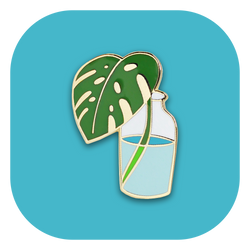 Bottled Monstera