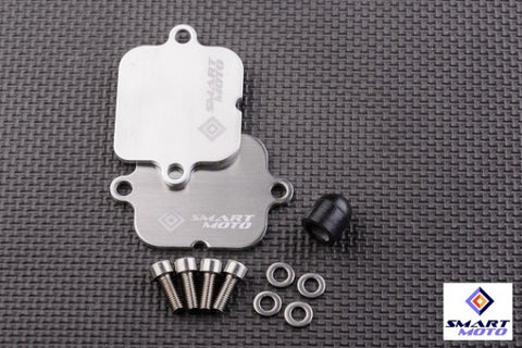 Honda PAIR/AIS Eliminator Block Off plates kit