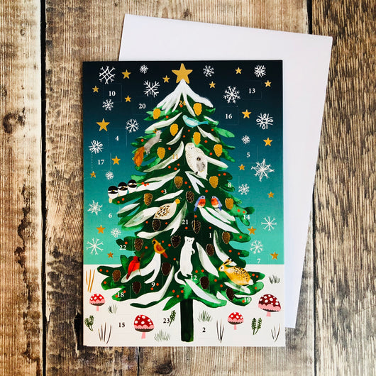 Christmas Conifer Mini Advent Calendar Card