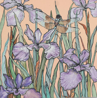 Dragonfly and Iris, In The Wild, TW82