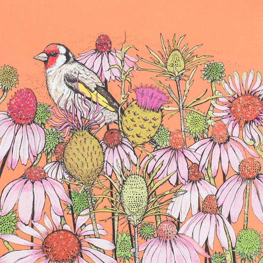 Goldfinch and Coneflowers , In The Wild, TW83