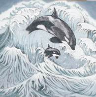 Orcas, In The Wild, TW91