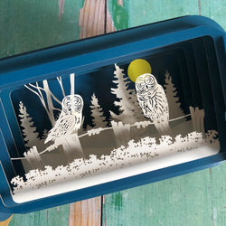 Message in a Bottle 3D Card Owls