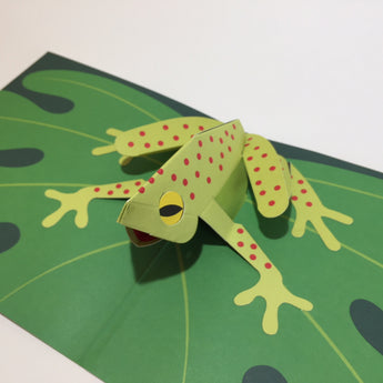 Pop Up 3D Frog Card by Two To Tango