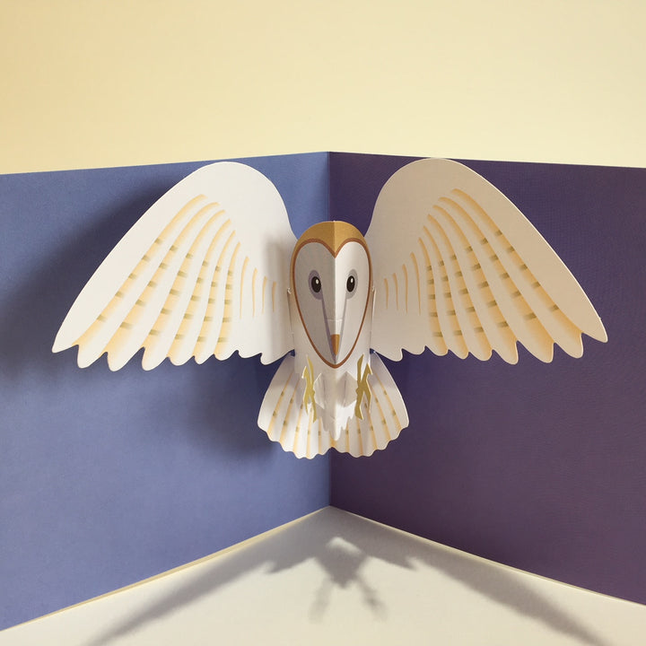 Pop Up 3D Owl Card by Two To Tango