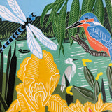 Kingfisher and Dragonfly - Nature Trail, NT14A