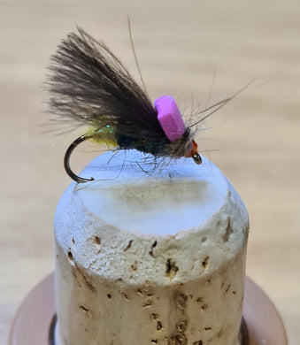 CDC Twinkle Sedge with Indicator Spot - New 2020
