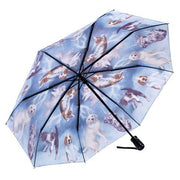 Cats & Dogs Folding Umbrella