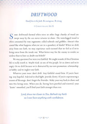 Harper Collins Devotions From the Beach, Excerpt