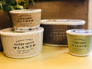 Botanical Garden Collection - Swan Creek Candles