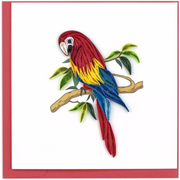 Parrot Quilling Card