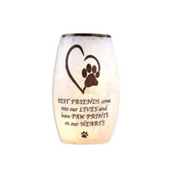Best Friend Pet Lighted Glass Vase, 3.25