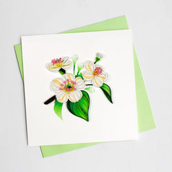 White Hawthorn Blossom Quilling Card