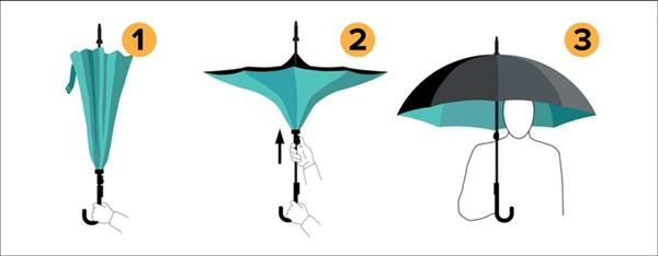 Dahlia Reverse Close Umbrella
