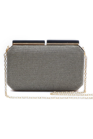 Goldenish Silver Hard Clutch