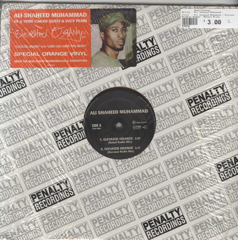 Ali Shaheed Muhammad - Elevated Orange / Lord Can I Have This Mercy