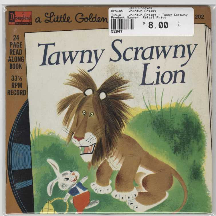 Unknown Artist - Tawny Scrawny Lion