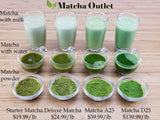 WHOLESALE BULK | Organic Starter Matcha Green Tea Powder Pure Matcha Matcha Outlet