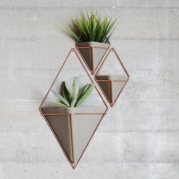Trigg Large Wall Vessel- Copper