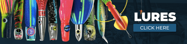 Fishing Bait & Lures - Bulluna.com