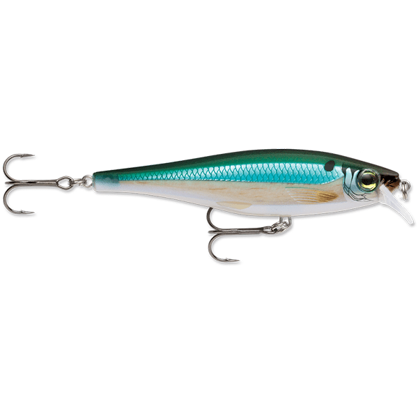 Rapala BX Minnow 10 Lure - 4 Inches