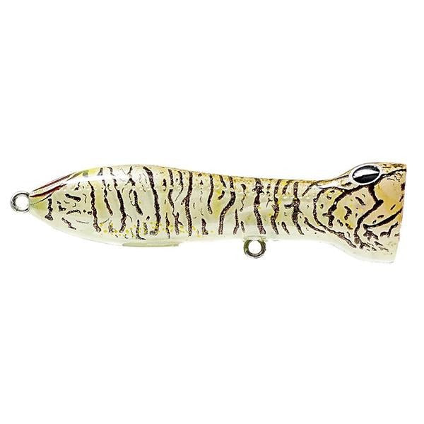 Nomad Chug Norris Popper 50 FW Lure - 2 Inches