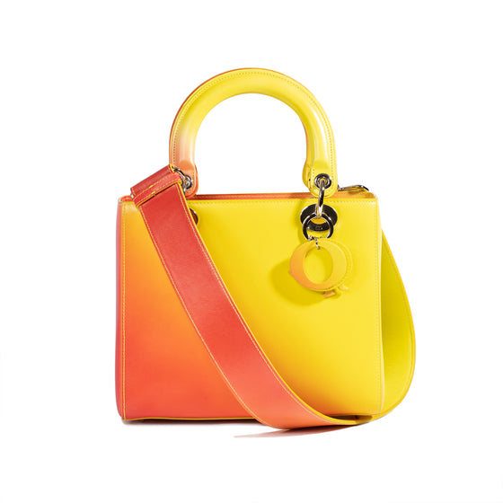 Christian Dior Medium Multicolour Lady Dior Bag