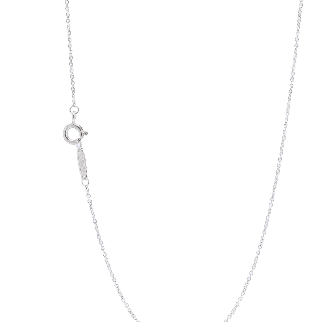 Tiffany & Co. 1837 Interlocking Circles Pendant Necklace Necklaces Tiffany & Co.