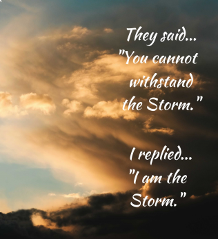 I Am the Storm - Canvas Wall Art - Muggalicious