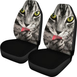 Tabby Cat Eyes Universal Fit Car Seat Covers