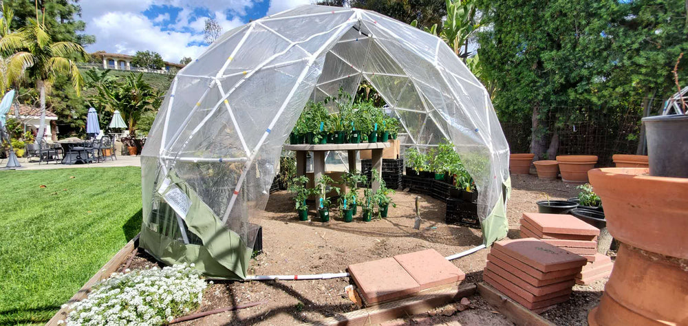 Growing plants in a Sonstar Bubble Dome Greenhouse.