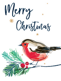 Katie Phythian Merry Christmas Robin Card Pack