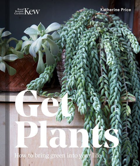 GET PLANTS: HOW TO BRING GREEN INTO YOUR LIFE