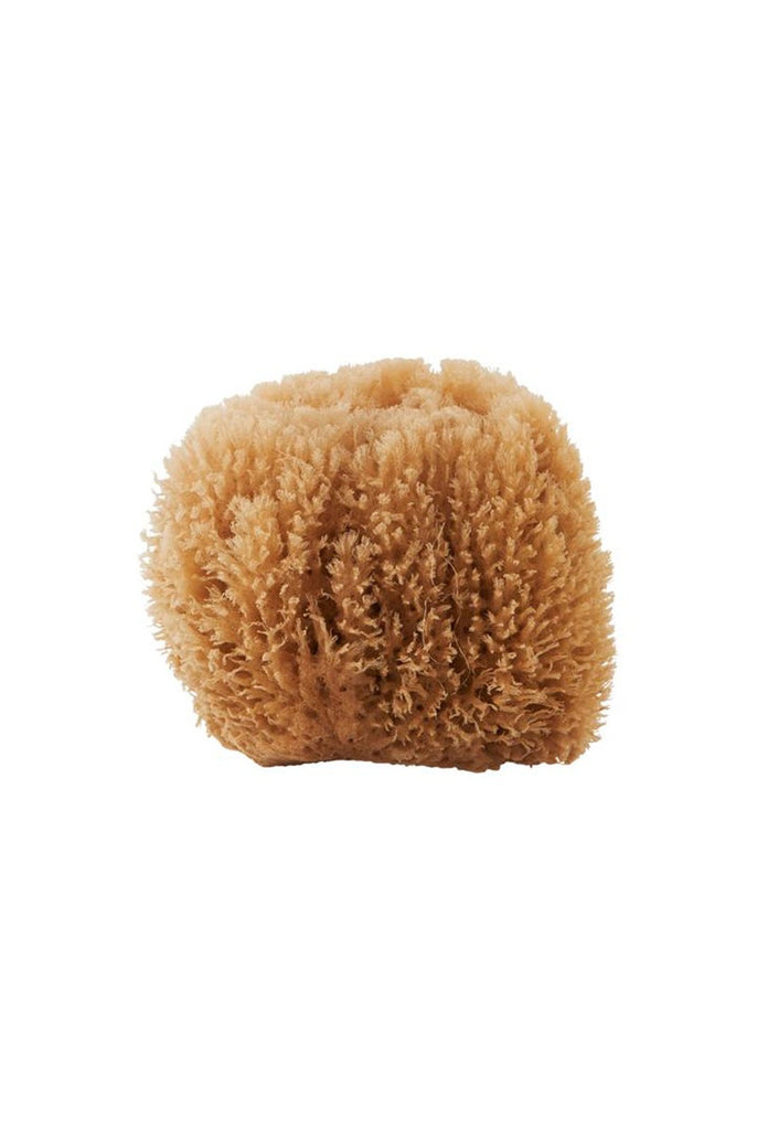 100% NATURAL SPONGE - ALL SKIN TYPES