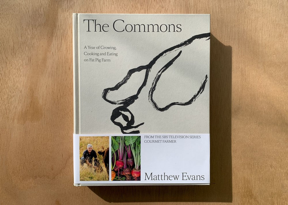 THE COMMONS - MATTHEW EVANS