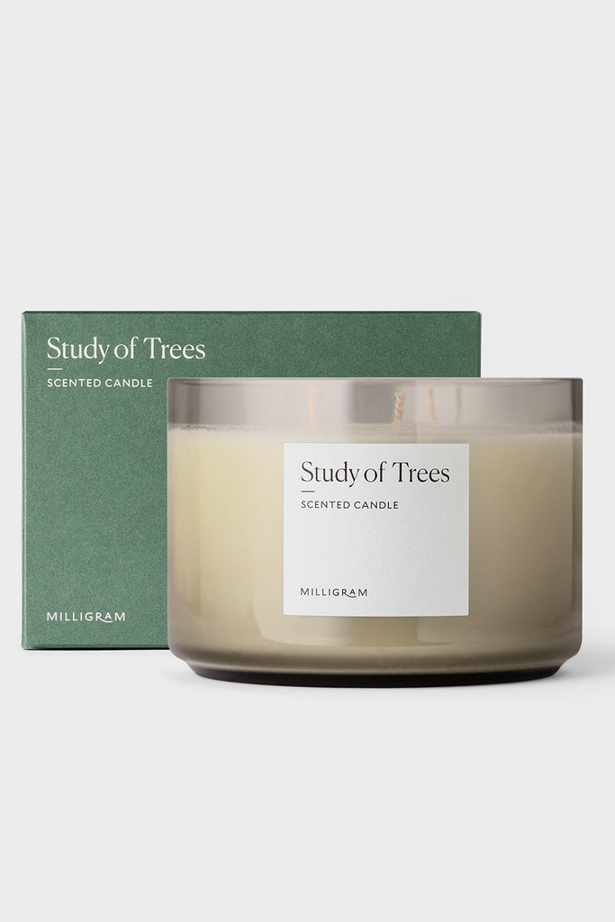 SCENTED THREE WICK CANDLE  - STUDY OF TREES