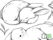 3-rabbits-wall-stickers-close-up-lilipinso