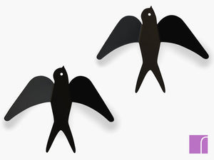 Black-Swallow-Hooks