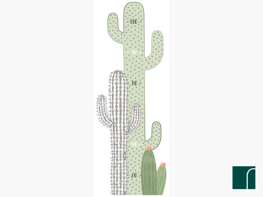 Cactus-Growth-Chart-lilipinso