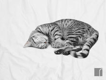Snurk Ollie Cat-Bedding-Single